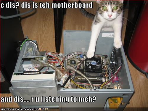 funny-pictures-cat-explains-computers